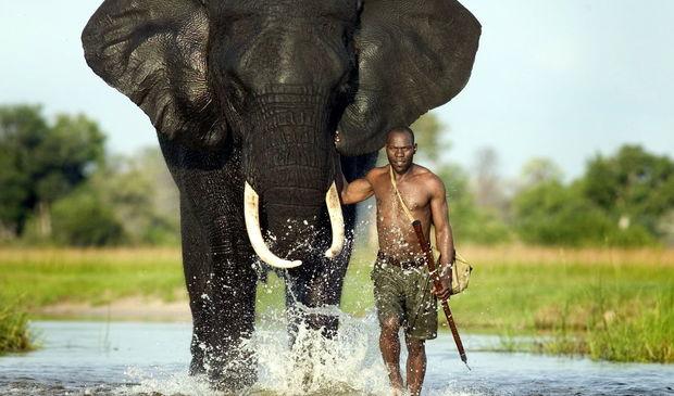 Afrikada yayılmış epidemiya alimləri çaş-baş qoyub - FOTO