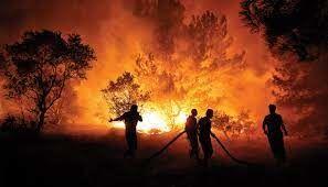 Türkiyədə 117 yanğın nəzarət altına alınıb - FOTO